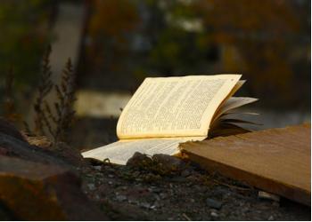 ТОП-10 книг, які неможливо дочитати до кінця.