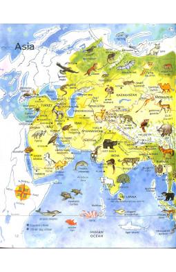 Children's Picture Atlas of Animals (Usborne)