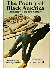 The Poetry of Black America: Anthology of the 20th Century