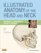 Illustrated Anatomy of the Head and Neck, 4e (.Net Developers Series)